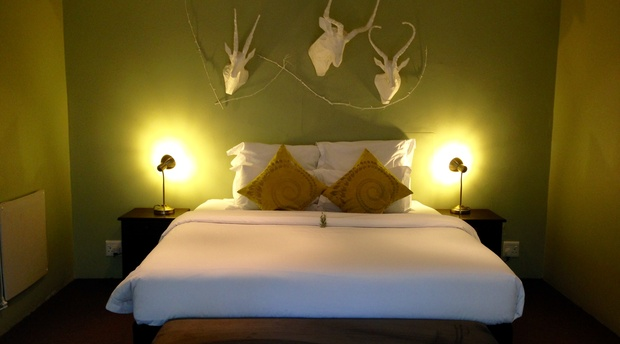 The White Buck Suite